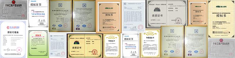 资质授权资格审查